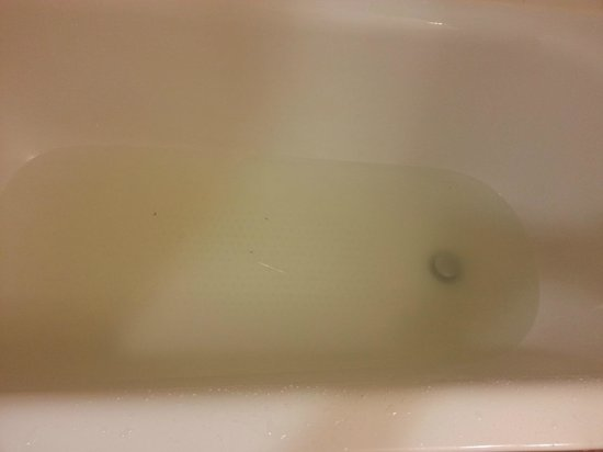 Sheraton Baltimore Washington Airport Hotel - BWI: Tub that never drained