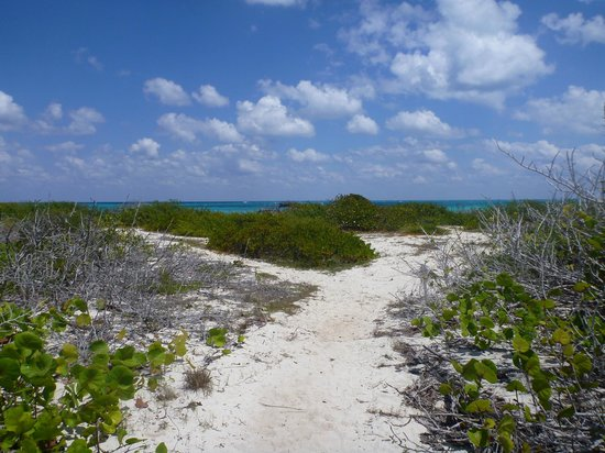 Sol Cayo Santa Maria: path to beach