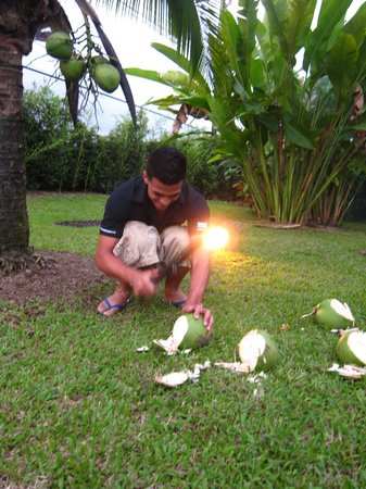 Arenal Backpackers Resort: Fresh coconut milk