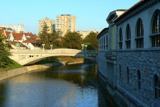 River Ljubljanica Kanal: canal do rio ljubjanica 3