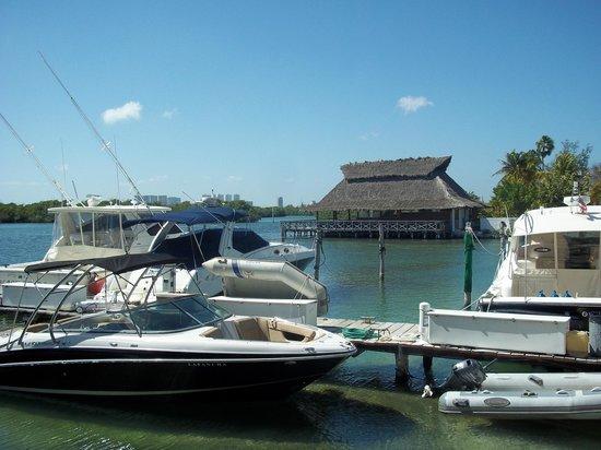 Sotavento Hotel & Yacht Club: alrededores de area de piscina y comedor