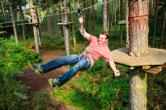 Go Ape Moors Valley: Go Ape Tree Top Adventure