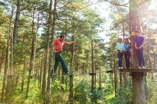 Go Ape at Peebles, Glentress
