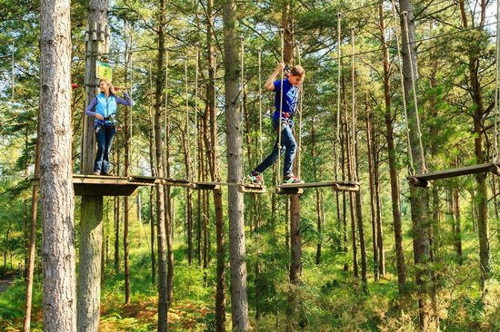 Go Ape at Peebles, Glentress: Go Ape Tree Top Adventure