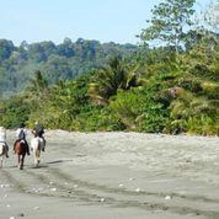 Boca Sombrero: Horseback riding along the beach