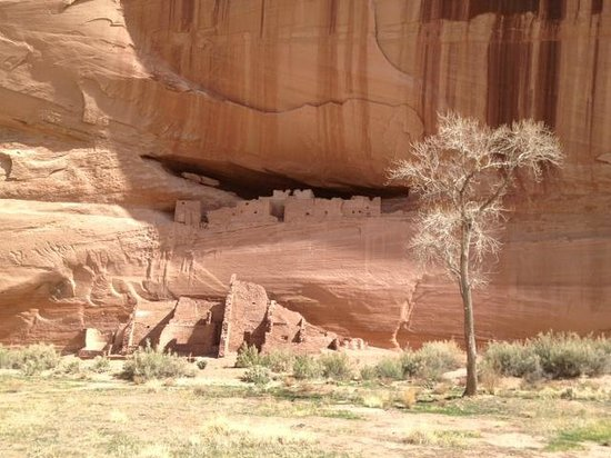 Thunderbird Lodge: White House ruins in Canyon De Chelly