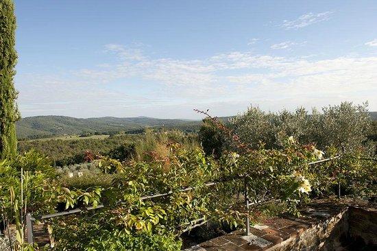 Casa Cornacchi Country House: Landscape