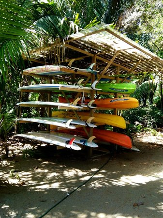 Boca Sombrero: Selection of surf boards and kayaks for rent