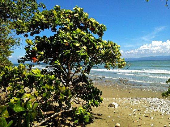 Boca Sombrero: Playa Sombrero