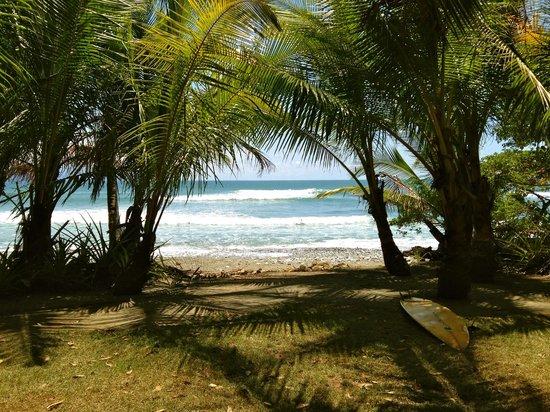 Boca Sombrero : Playa Sombrero
