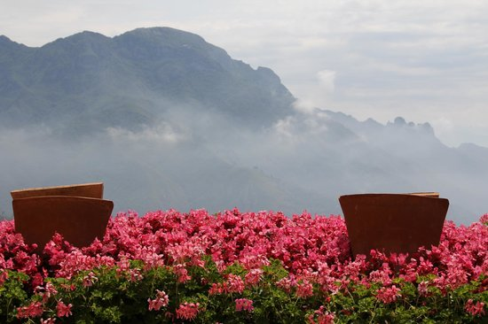 Palazzo Avino: Geraniums with a view