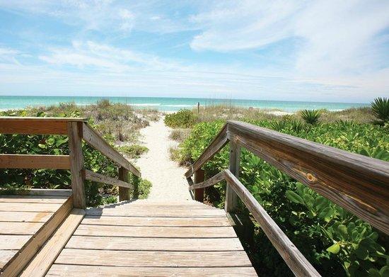 The Beach on Longboat Key: Pathway to Beach
