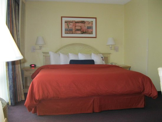 BEST WESTERN Orlando Gateway Hotel: Cam King