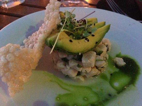 Tropica Restaurant & Bar: snapper ceviche
