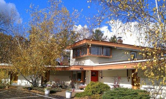The Usonian Inn LLC: fall sky