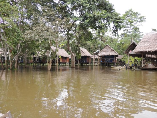 Muyuna Amazon Lodge: The lodge from the boat
