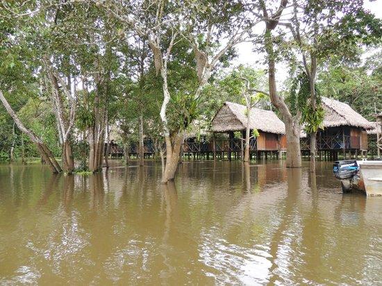 Muyuna Amazon Lodge: The lodge from the boat