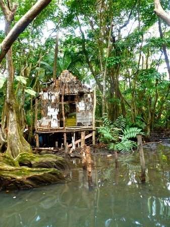 Indian River : Pirates of the Caribbean Dead Man's Chest filmed here (Calypso)
