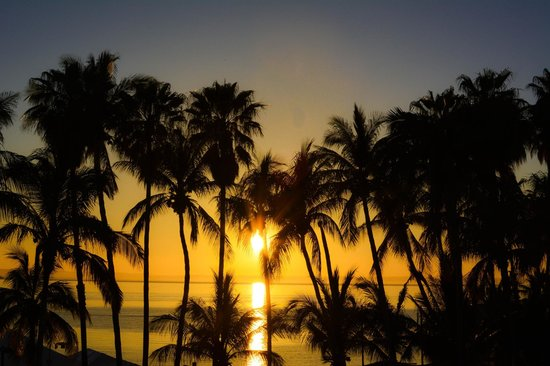 La Concha Beach Resort: Took this from  my balcony... sunset in between palm trees