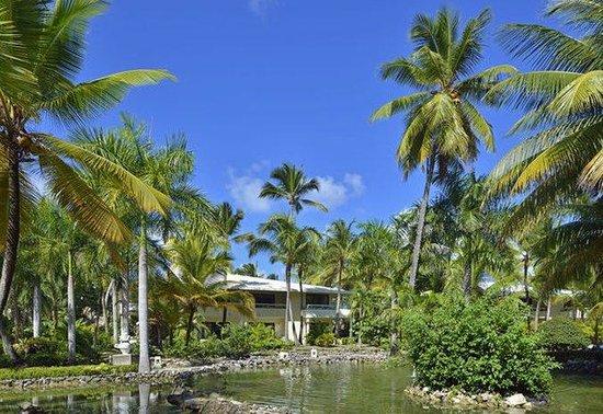 Paradisus Punta Cana Resort: Normal APPunta Cana Garden