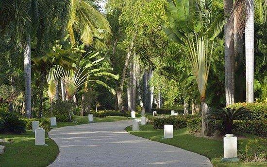 Paradisus Punta Cana Resort: Normal CPPunta Cana Garden