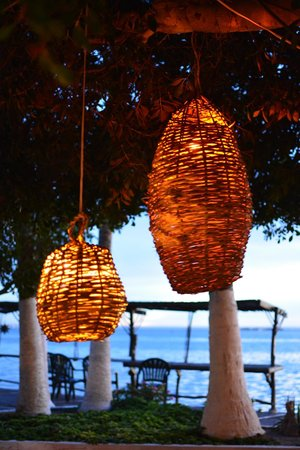 La Concha Beach Resort: lamps hanging from trees