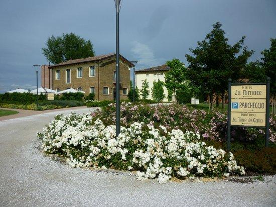 Hotel La Fornace: Parco dell'hotel