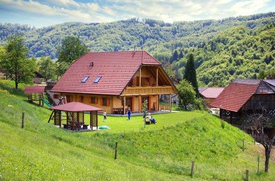 Tourist Farm Pirc
