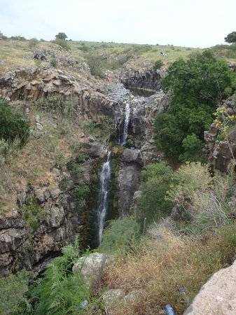 Yehudia Forest Reserve