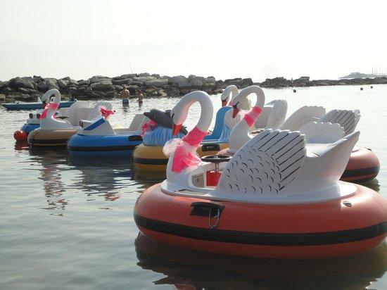 Noleggio Bagni 73 Cattolica: Per i più piccoli...Bumpers Boat! Gommoncini elettrici a gettoni!!!