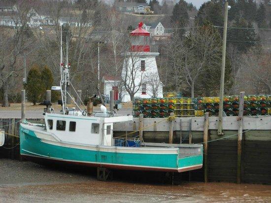 Salmon River B and B Ltd: low tide