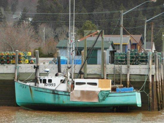 Salmon River B and B Ltd: Lobster boat at low tide