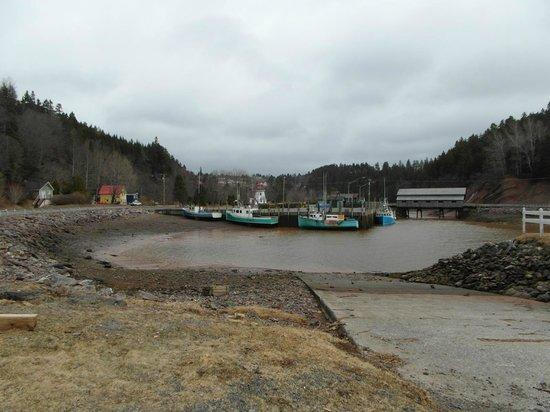 Salmon River B and B Ltd: Harbor  at St. Martins low tide