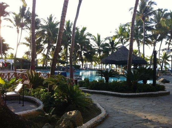 Coral Costa Caribe Resort & Spa: beach
