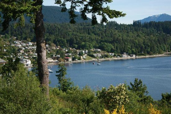 A View With A Room Bed & Breakfast: View of Gibsons Harbour
