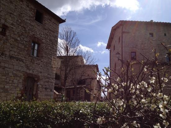 Castellare De' Noveschi: esterno