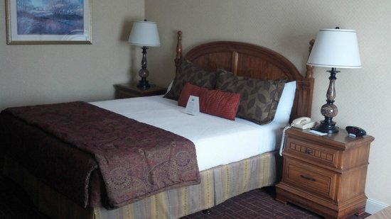 Lombard Motor Inn: King Room