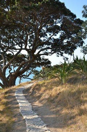Waiheke Island Sculpture Trail