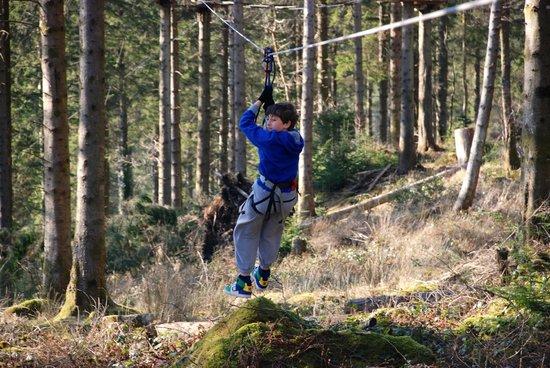 Go Ape at Coed y Brenin: zipwire