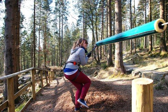 Go Ape at Coed y Brenin : zipwire landing