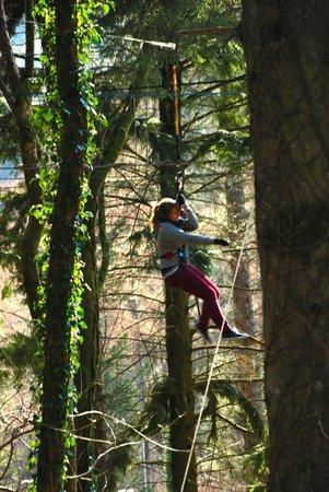 Go Ape at Coed y Brenin : tarzan swing