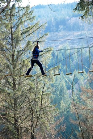 Go Ape at Coed y Brenin : high wire fun!
