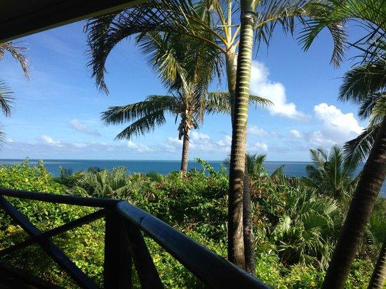 Wananavu Beach Resort: Great views