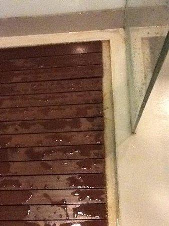 B-Lay Tong Phuket: filthy shower