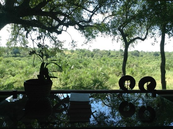 Londolozi Tree Camp: View from Suite