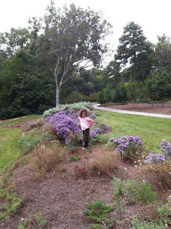 Lockerly Arboretum: Lucy in flowers