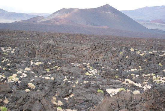 Antofagasta de la Sierra, Argentina: Camino de valles y volcanes