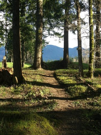 Skamania Lodge: Walking trail around golf course