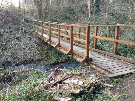 Skamania Lodge: Bridge on walking trail around golf course