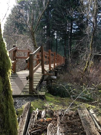 Skamania Lodge: Trail around the golf course